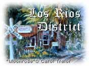 Los Rios District
